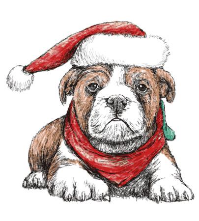 Afbeelding van bulldog met rode hoed, hand tekenen vector. Gebruik voor Chrismas dag.