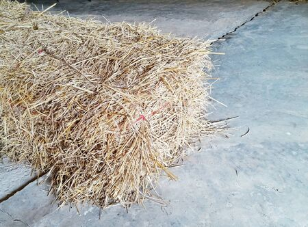 cement floor: rice straw on cement floor Stock Photo