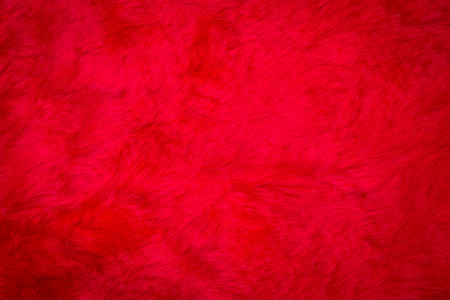 red carpet background: texture of red fur with dark vignette, use for background