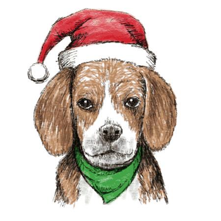 christmas hat: hand drawn vector of beagle with christmas hat on white background