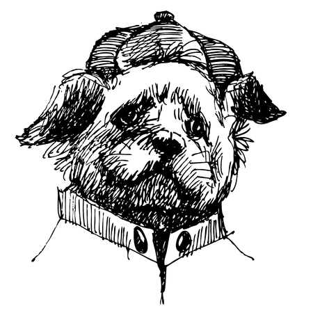 shih tzu: Shih tzu with shirt and hat, hand drawn vector.