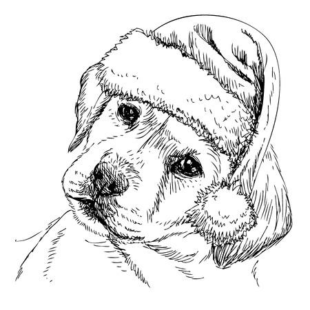 Labrador Retriever met hoed van de Kerstman hand getrokken vector, gebruik voor kerst achtergrond Stockfoto - 38792290