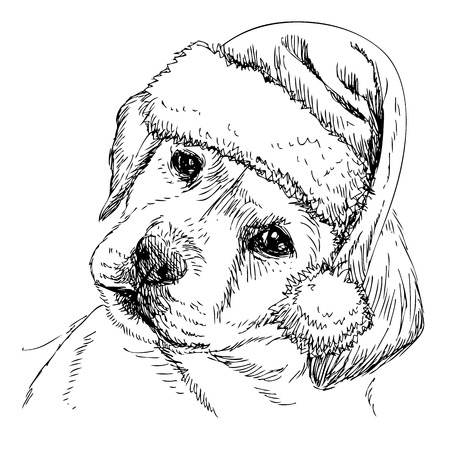 Labrador Retriever with santa claus hat hand drawn vector , use for christmas background