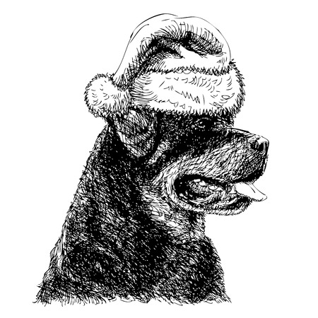 obedient: Rottweiler with santa claus hat hand drawn vector , use for christmas background