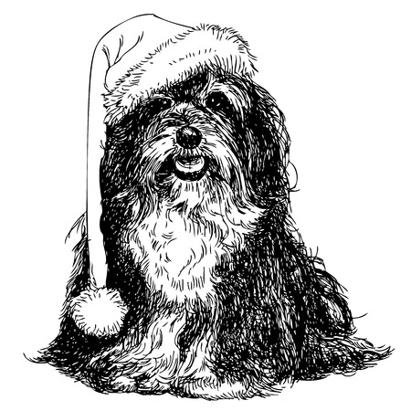 shih tzu: Shih Tzu with santa claus hat hand drawn vector , use for christmas background