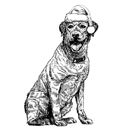 labrador christmas: Yellow Labrador Retriever with santa claus hat hand drawn vector , use for christmas background Illustration