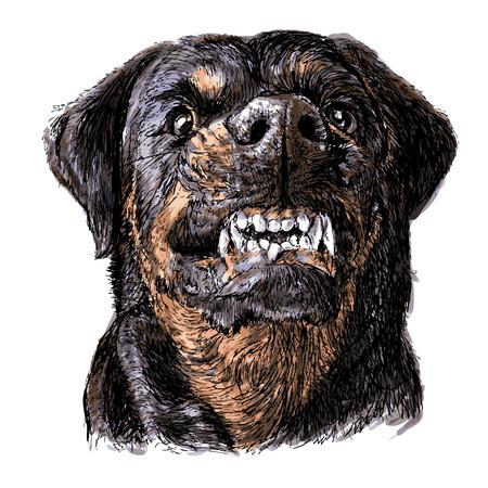 Afbeelding van boze Rottweiler handgetekende vector
