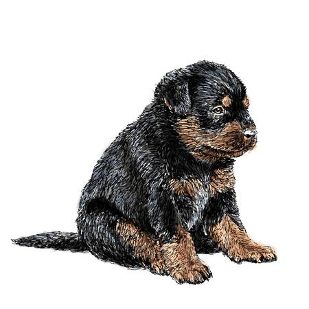 子犬ロットワイラー手のイメージ描画ベクトル