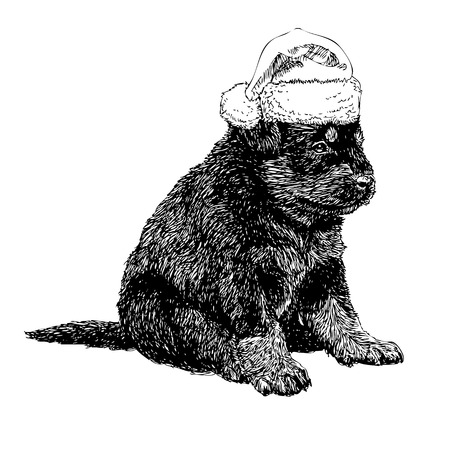 obedient: Puppy Rottweiler with santa claus hat hand drawn vector , use for christmas background
