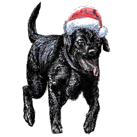 labrador christmas: Black Labrador Retriever with santa claus hat hand drawn vector , use for christmas background