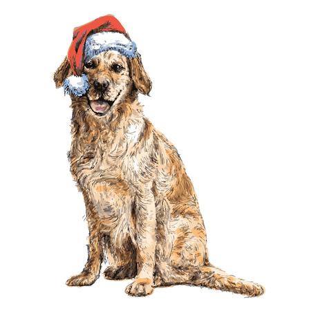 Yellow Labrador Retriever with santa claus hat hand drawn vector , use for christmas background Stock Illustratie