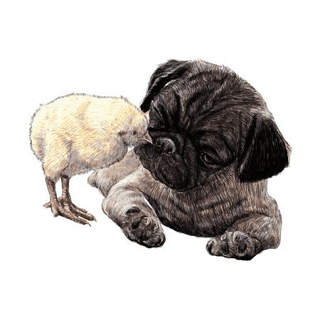 Beeld van Pug hond ang een kuiken hand getrokken vector Stock Illustratie