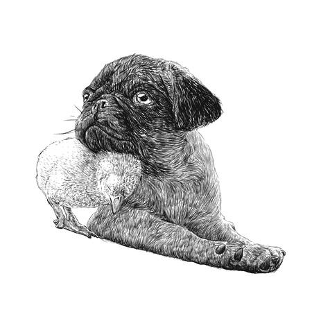 パグ犬アンひよこ手のイメージ描画ベクトル