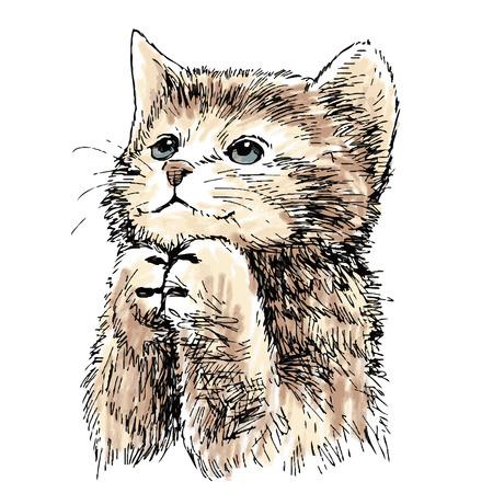 Mooie kitten hand getekende vector geïsoleerd op een witte achtergrond