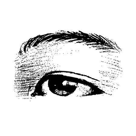 facial features: freehand sketch of left human eye hand drawn on white background