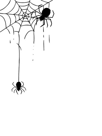 freehand sketch illustration of spider and web, doodle hand drawn