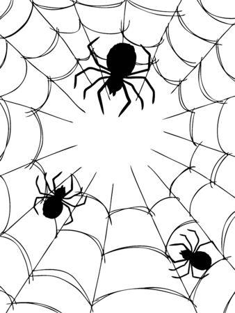 gossamer: freehand sketch illustration of spider and web, doodle hand drawn