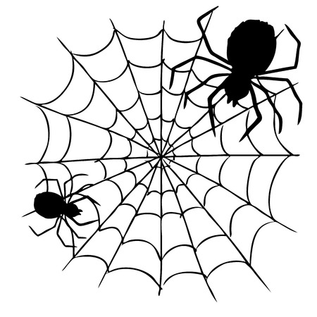 spider web: freehand sketch illustration of spider and web, doodle hand drawn