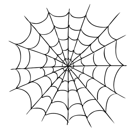 freehand sketch illustration of spider web, doodle hand drawn