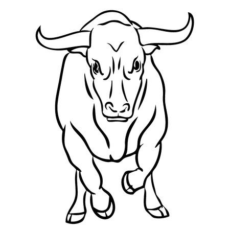 head shape: Freehand illustration of bull on white background, doodle hand drawn Illustration