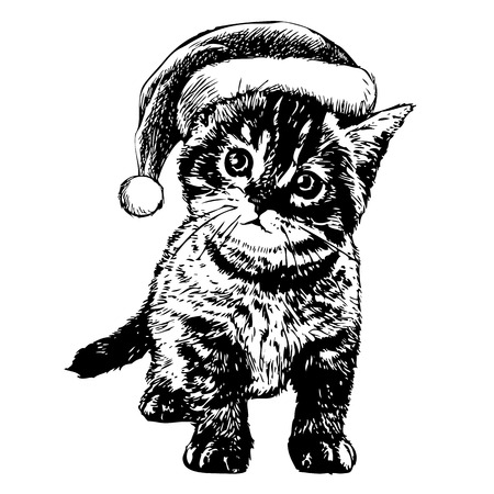 obedient: freehand sketch illustration of little cat, kitten with christmas santa hat, doodle hand drawn