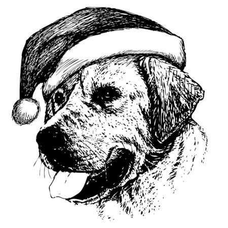 labrador doodle: freehand sketch illustration of Labrador Retriever dog with christmas santa hat, doodle hand drawn, christmas pet
