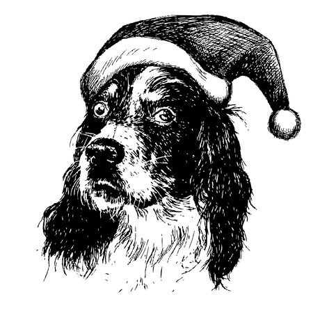 setter: freehand sketch illustration of English setter dog with christmas santa hat, doodle hand drawn, christmas pet Illustration