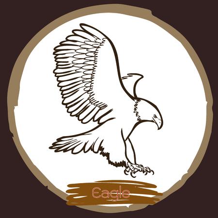 a large bird of prey: freehand sketch illustration of eagle, hawk bird doodle hand drawn Illustration