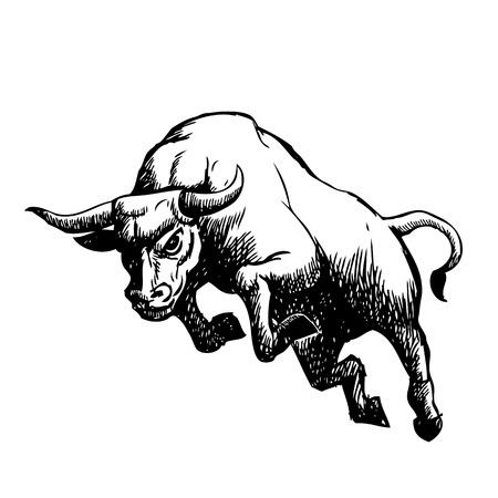 sketch illustration of charging bull,  doodle Illusztráció