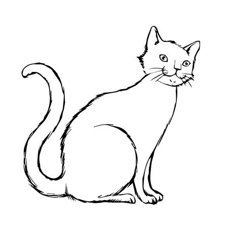 猫、子猫のいたずら書き手描きのフリーハンド スケッチ図