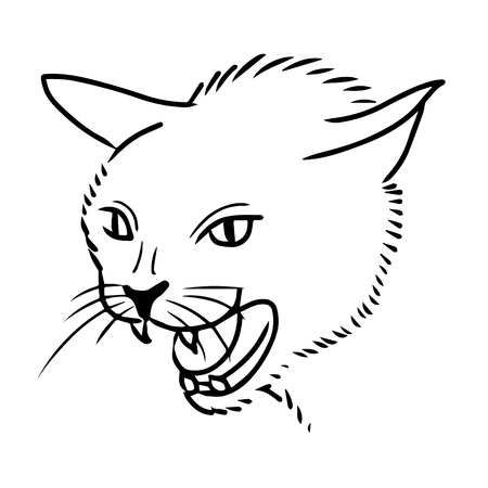 freehand sketch illustration of angry cat, kitten doodle hand drawn