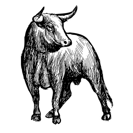 freehand schets illustratie van stier, doodle hand getekend