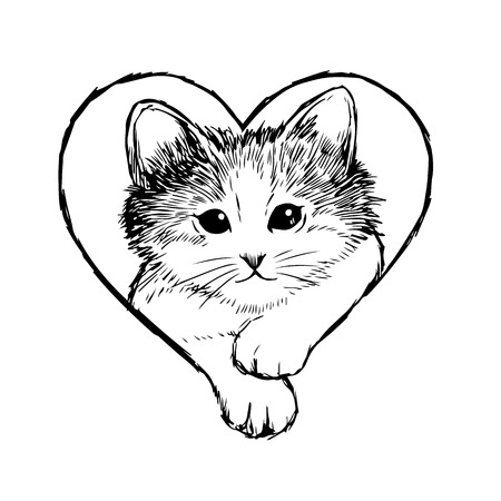 Little cat in heart frame hand drawn isolated on white background Banque d'images - 114785999