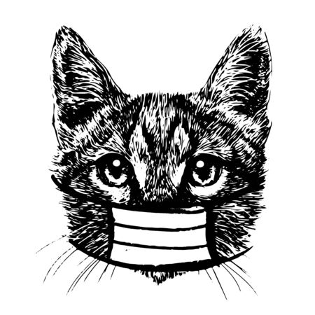 illustration of cat with mask hand drawn isolated on white background Stok Fotoğraf - 145152807