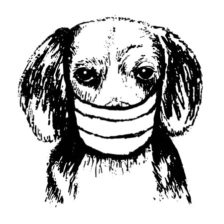 freehand sketch illustration of Beagle dog with mask doodle hand drawn Stok Fotoğraf - 145152699