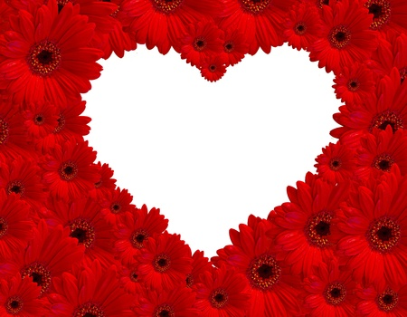 Red gerberas flower create heart picture on white background  photo