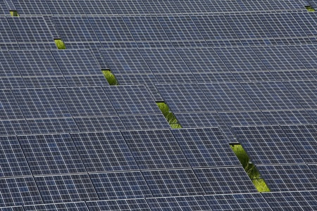 photovoltaic panels solar field Stock Photo - 11810858