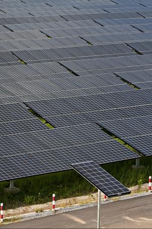 photovoltaic panels solar field  photo