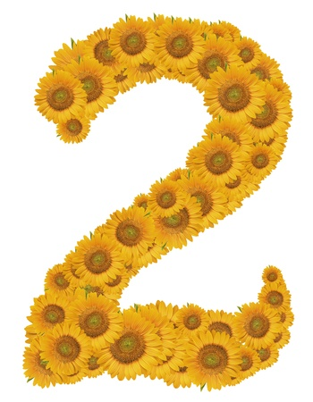 Number 2, Sunflower isolate on White background  Stock Photo - 11850641
