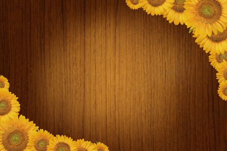 Wood background with sunflowers. photo