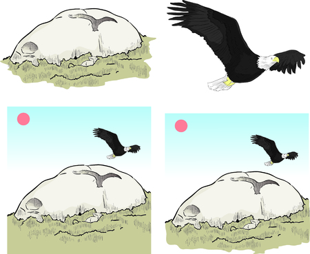 eagle canyon: eagle rock los angeles
