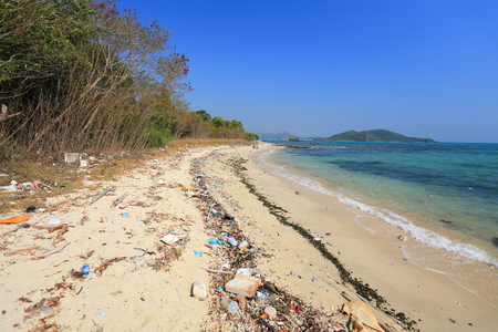 polluted river: Beach with garbage