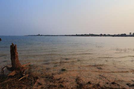 settler: Rivers and grass