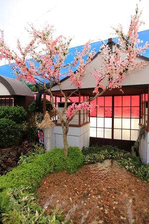 fake: Sakura fake