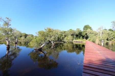 liquid reflect: red wood bridge reflection water