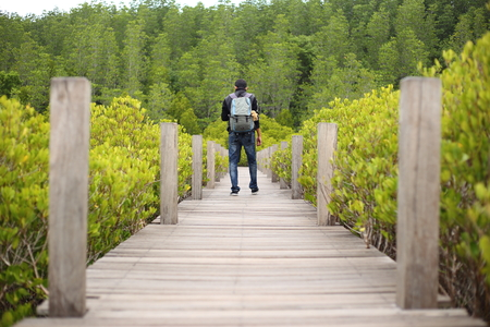 walking paths: Man and Walkway made from wood and mangrove field of Thung Prong Thong forest in Rayong at Thailand
