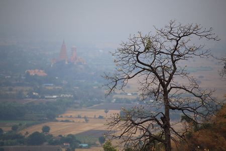 Tree and cave temple view Kanchanaburi in Thailand Stock Photo