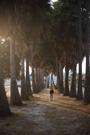 Woman standing in the palm garden planted by the wayside, Sattahip, Thailand
