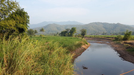 unaffected: Canal flow through a meadow in mountainous area.