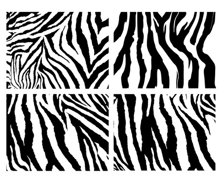 set of Zebra pattern vector Vector